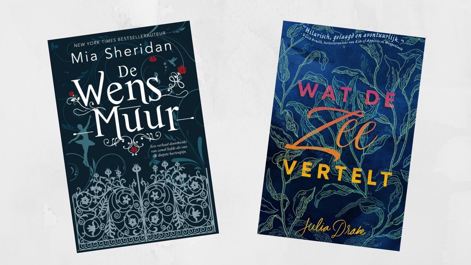 Wat de zee vertelt en De Wensmuur De nieuwe boeken waar ik naar uitkijk in november