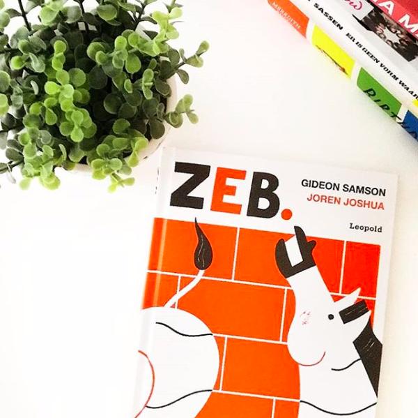 Deze boeken kocht ik op Black Friday bij Voordeelboekenonline Zeb gideon samson